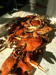 2016_Hanover_Crab_Feast_015
